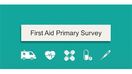 first-aid-primary-survey-1.jpg